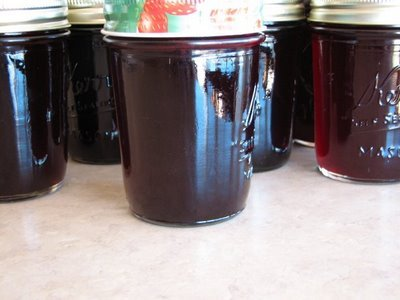 blackberry jelly 04-09