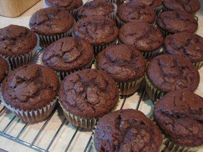 choc buttermilk muffins