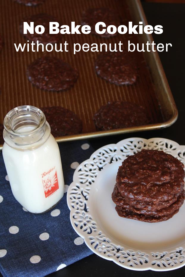 No Bake Cookies without Peanut Butter