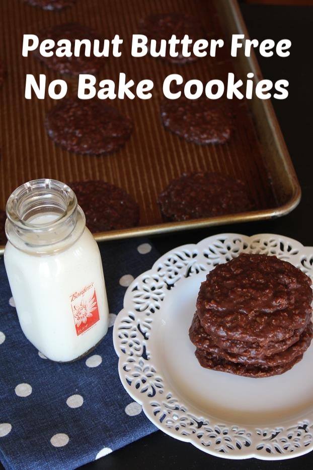 Peanut Butter Free No Bake Cookies