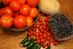 July Garden Update and How Is Your Garden Doing