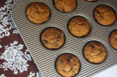 Gluten-Free-Chocolate-Chip-Honey-Pumpkin-Muffins