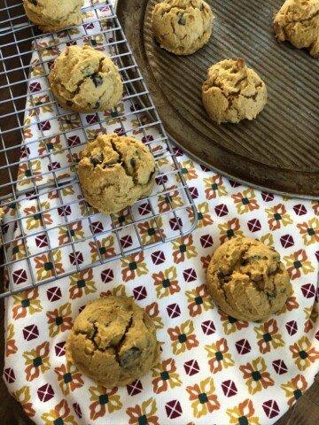Gluten Free Pumpkin Cookie