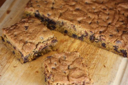 gluten-free-chocolate-chip-pumpkin-bars-pictures