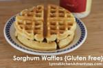 Sorghum Waffles {Gluten Free}