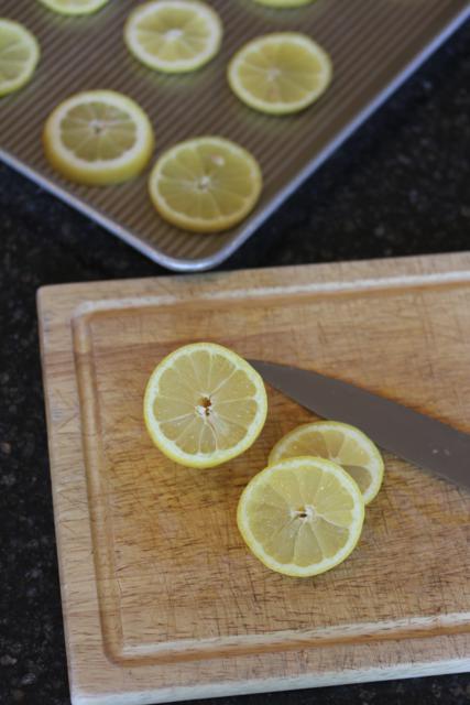 Freezing Lemons for Ice Water-