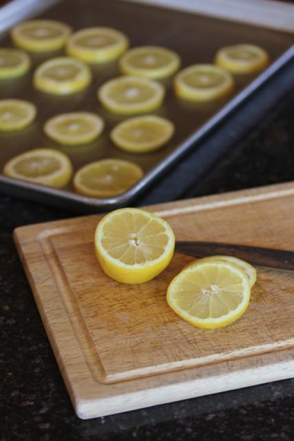 Freezing Lemons for Ice Water 5