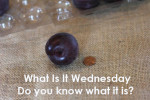 What Is It Wednesday {July 10th}