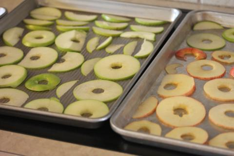 Homemade Apple Chips_