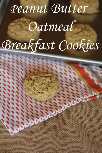 oatmeal cookies healthified oatmeal peanut butter breakfast cookies ...