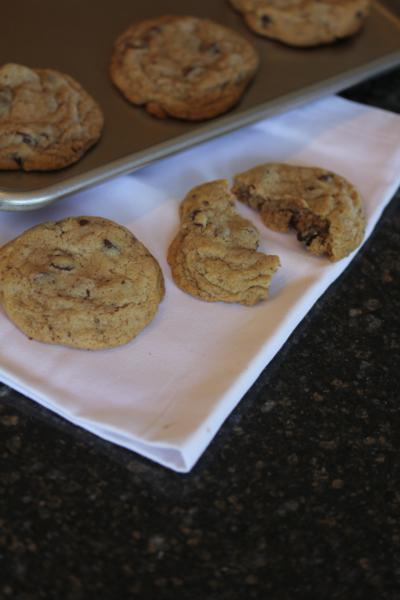 Ultimate Gluten Free Chocolate Chip Cookie