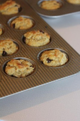 Oatmeal Breakfast Muffins_