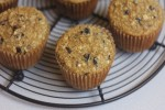 Oatmeal Honey Breakfast Muffins