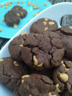 flourless-chocolate-peanut-butter-chip-cookies