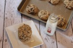 Flourless Oatmeal Cookies