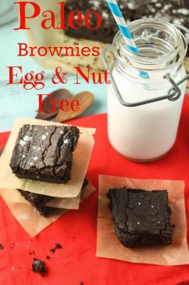 Paleo-Vegan-Brownies