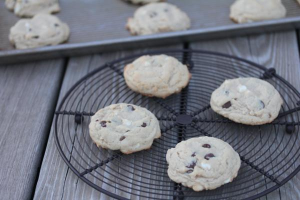 Double Chocolate Pudding Cookies_