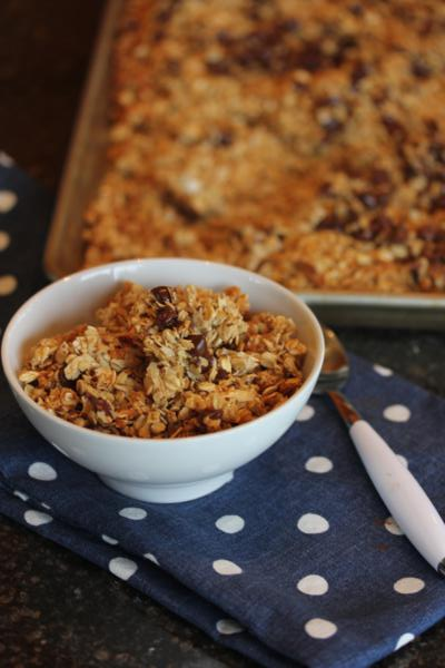 Chocolate Chip Coconut Granola