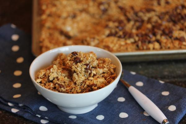 Chocolate Chip Coconut Granola_