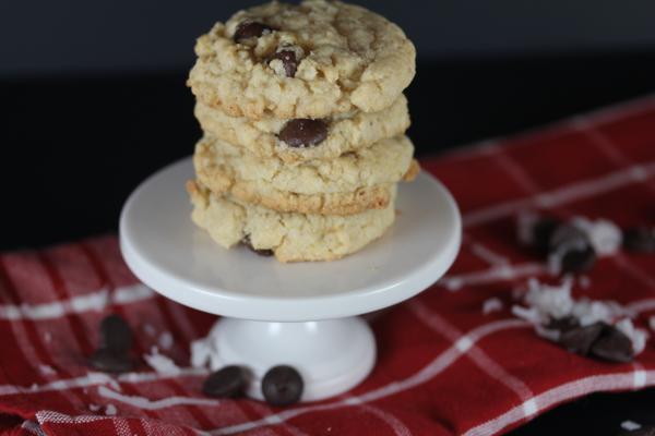 Gluten Free Coconut Oatmeal Cookies-