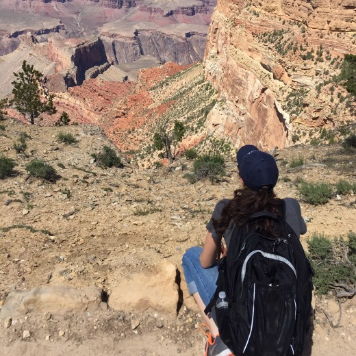 Grand Canyon Bri