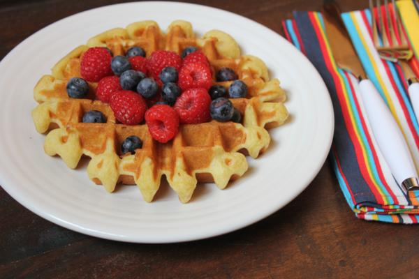 Light and Fluffy Dairy Free Waffles__