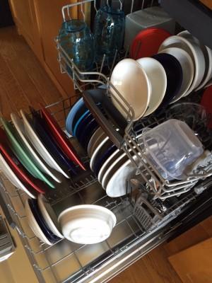 Bosch Dishwasher 2