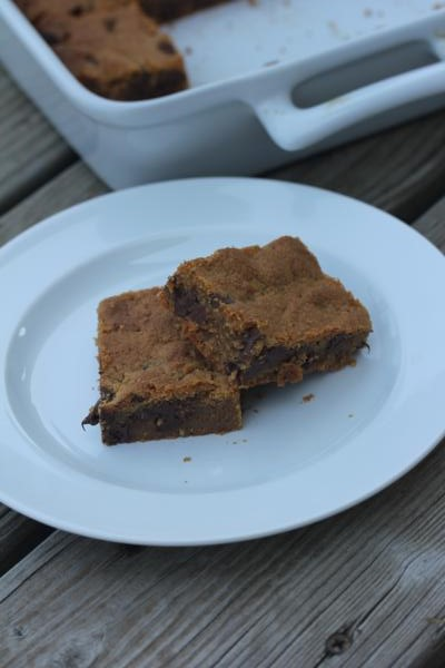 Flourless-Peanut Butter Bars__