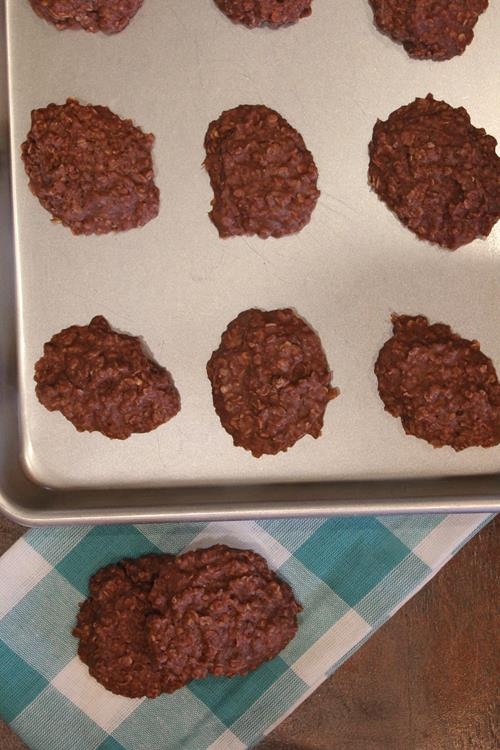 Dairy Free No Bake Cookies