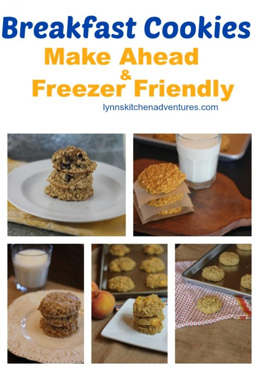 Breakfast Cookie Recipes