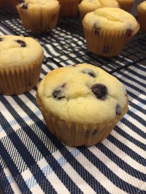 Basic Gluten Free Muffin Batter