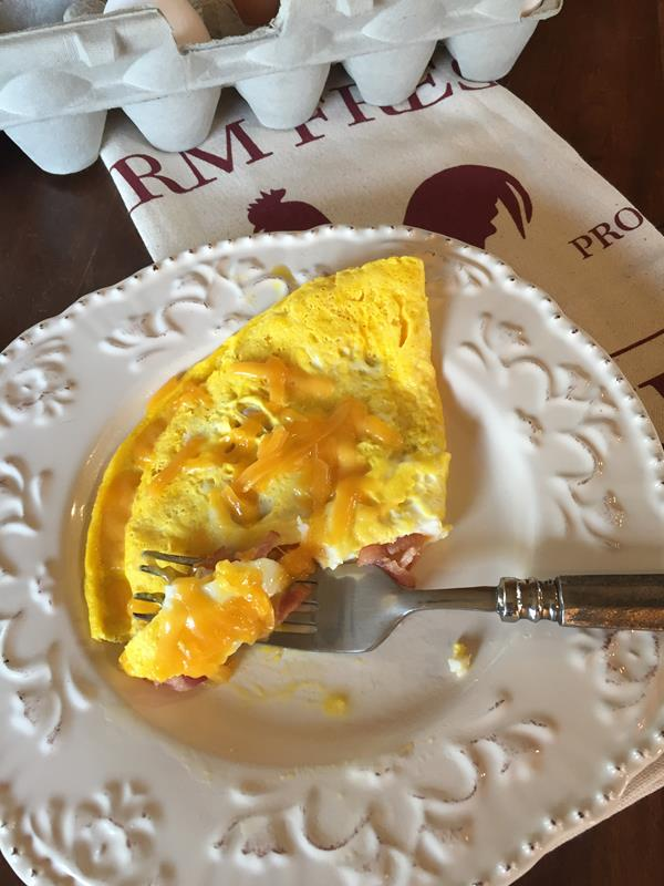 Bacon and Cheese Microwave Omelet