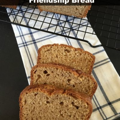 Gluten Free Friendship Bread