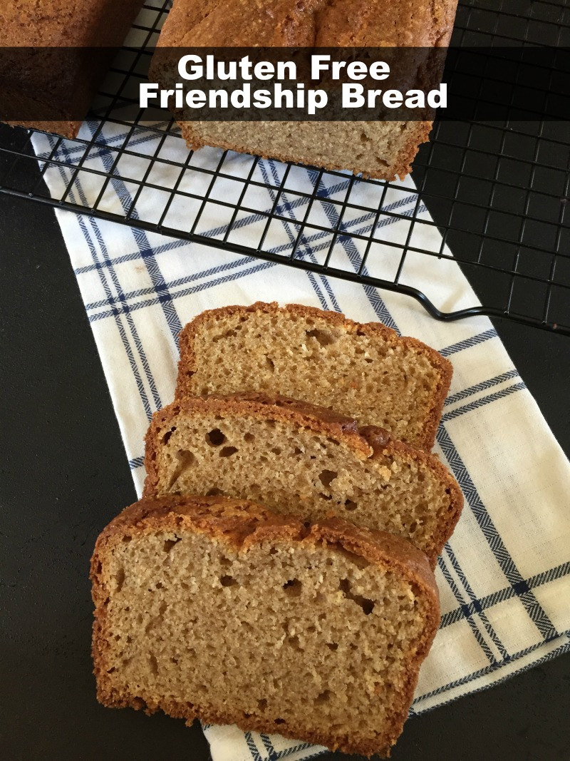 Gluten Free Friendship Bread
