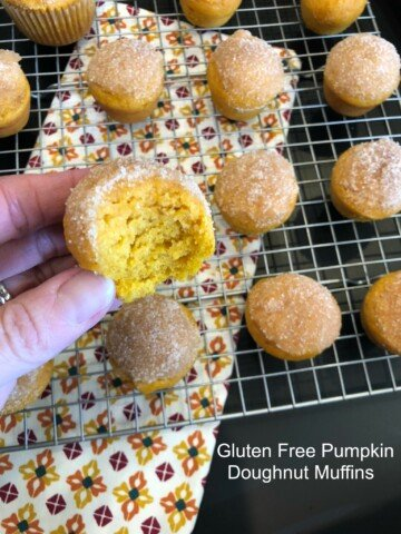 Gluten Free Pumpkin Doughnut Muffins