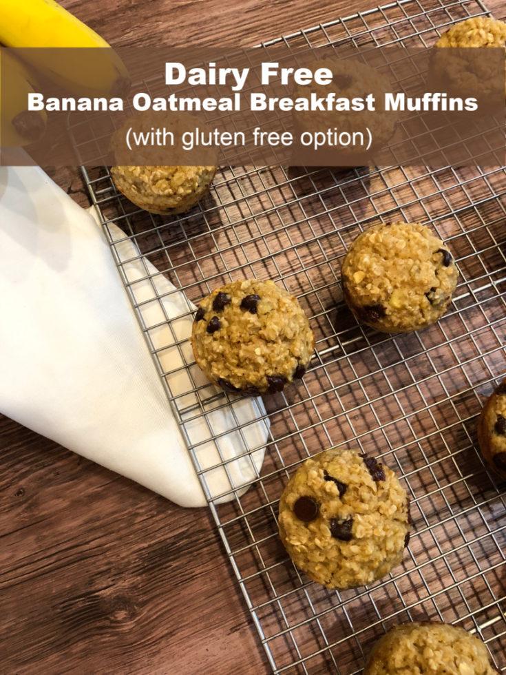 Dairy Free Banana Oatmeal Muffins