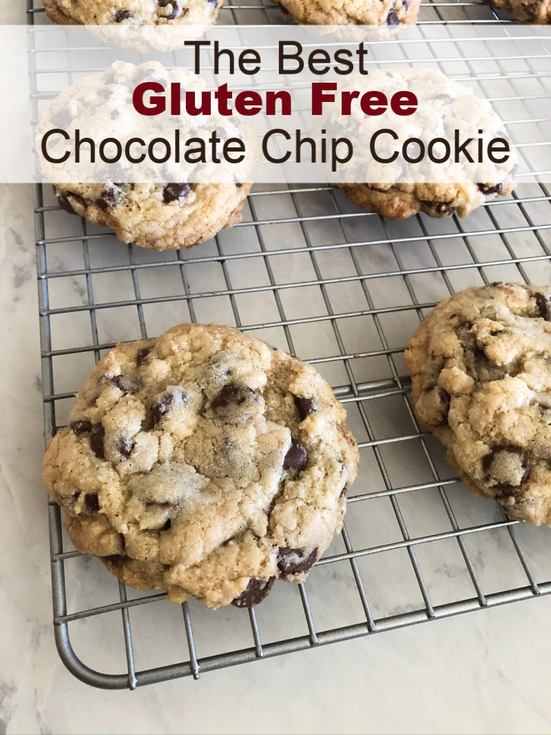 The Best Gluten Free Chocolate Chip Cookie Recipe