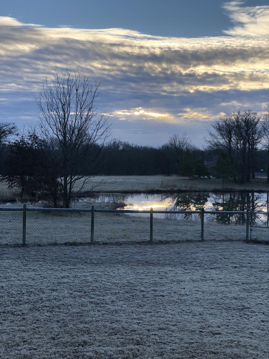 Pond, Field, Sunset
