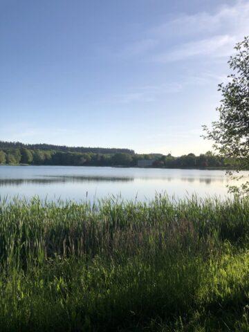 Oregon Lake
